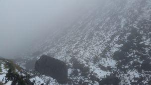 Salk moun