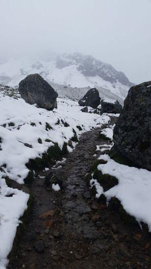 Salk Pass